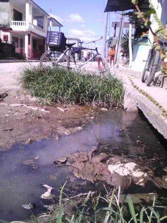 basureros y pantanos encalles de cuba