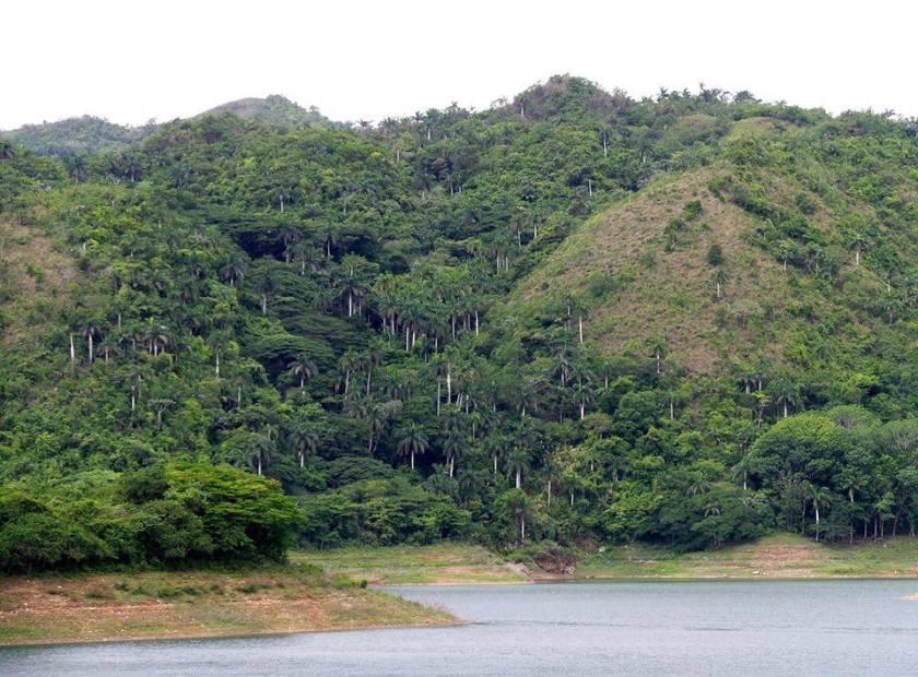Arroyo  El arroyo de la Sierra Tomado de Facebook